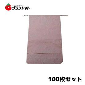 米袋 新袋 無地 30kg パック売り100枚 3重構造の頑丈な紙袋