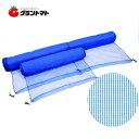 防風ネット 3m×50m 4mm目 紙管なし 強風軽減・風雪対策(防風網) 日本マタイ