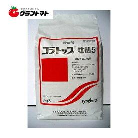コラトップ粒剤5 3kg いもち病の殺菌剤 水稲用農薬 シンジェンタジャパン
