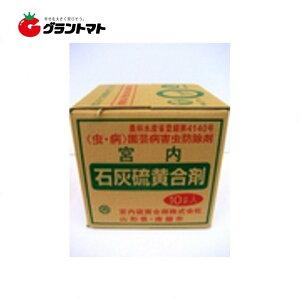 石灰硫黄合剤 10L 樹木殺菌殺虫剤 農薬 宮内硫黄合剤