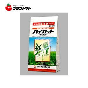 【まとめ割】【早期特価】ハイカット1キロ粒剤 1kg×60個(5ケース分) 水稲用中後期除草剤 農薬