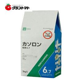 カソロン粒剤 6.7% 3kg 雑地用除草剤 農薬 アグロカネショウ