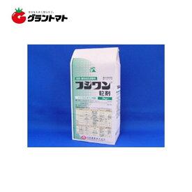 フジワン粒剤 3kg 水稲用殺菌剤 いもち病 農薬 日本農業