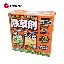 ブロック5粒剤 1ケース 3kg ×6個 除草剤 ブロマシル5% 非農耕地用 ハート