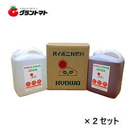 ハイポニカ A剤+B剤 各4L (4000ml) 箱売り2セット 水耕栽培 協和の液体肥料 液肥【取寄商品】