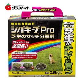 シバキープPro芝生のサッチ分解剤 2.8kg 芝生用肥料 レインボー薬品