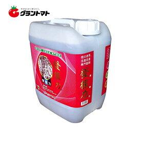 発根力 10L 箱売り2本入り 根の再生と発根促進専門剤 サングリーンオリエント【取寄商品】