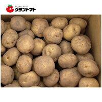北海道産じゃがいも種子キタアカリ(北あかり)5kg箱【種ばれいしょ検疫合格証票付き】※サイズはお選びいただけません。