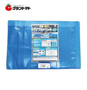 軽量・長持ち UVブルーシート 2年タイプ 3.6×5.4m (実寸サイズ) 萩原工業