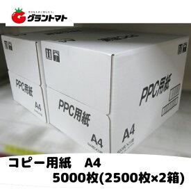 コピー用紙 A4 5000枚 (2500枚x2箱) PHOTO COPY PAPER A4 国産 高白色 A4用紙