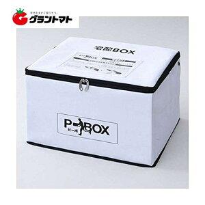 宅配BOX P-BOX(ピーボ) SPB-1 宅配ボックス 鍵 ワイヤー付 山善【取寄商品】