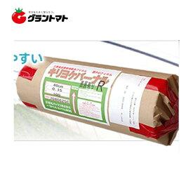 キリヨケバーナル 0.1mm×75cm×100m 原反 農POビニール【ビニールハウス】【取寄商品】