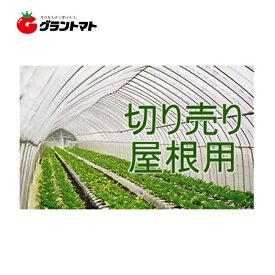 キリヨケバーナル 0.1mm×370cm 切売1m 農POビニール 受注生産【取寄商品】