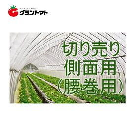 キリヨケバーナル 0.1mm×135cm 切売1m 農POビニール 受注生産【取寄商品】