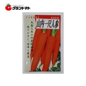 山内一尺人参 小袋 ニンジン種子【ゆうパケット可】