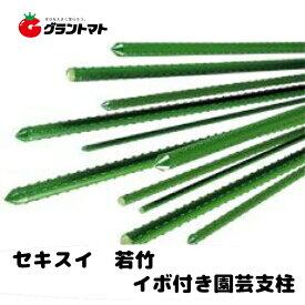 若竹 11mm×900mm パック売り 100本入り イボタケ(イボ竹) セキスイ樹脂