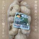 ホワイト六片ニンニク種子 1kg 土つき M・Lサイズ混合 【青森県産】