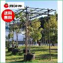 フルーツパーゴラKING 果樹用棚支柱セット 【メーカー直送】