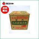 石灰硫黄合剤 10L 樹木の殺虫殺菌剤