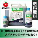 MCPP液剤 除草剤 5L スギナやクローバーに効く芝用除草剤