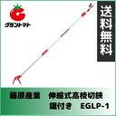 藤原産業 伸縮式高枝切鋏 鋸付き EGLP-1
