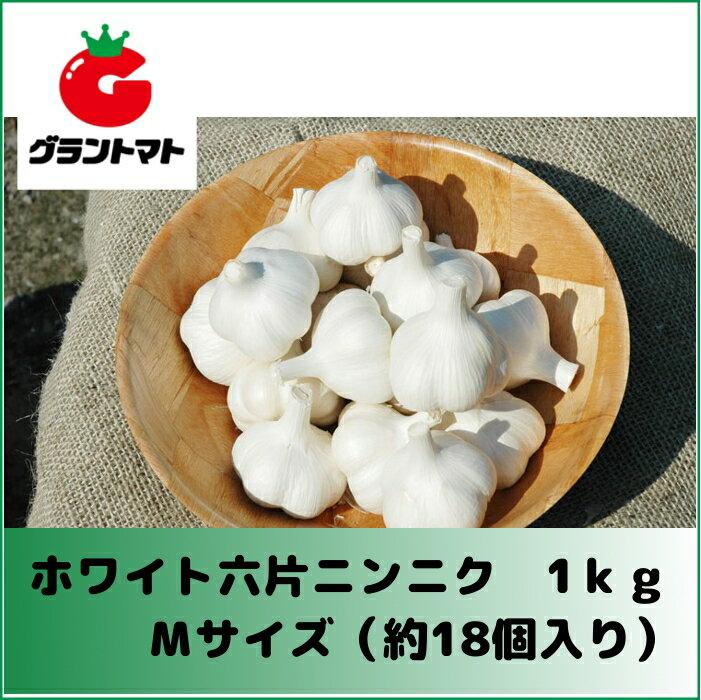 (!在庫限定特価!)ホワイト六片ニンニク種子 1kg Mサイズ(約18個) 【青森県産】