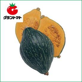 スイート南瓜 ロロン 100粒 野菜種子【かぼちゃ カボチャ】【取寄商品】