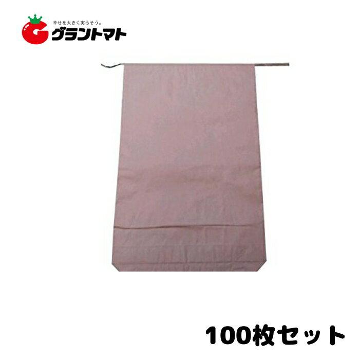 米袋 新袋無地 30kg 100枚 3重構造の頑丈な紙袋【単品送料無料】
