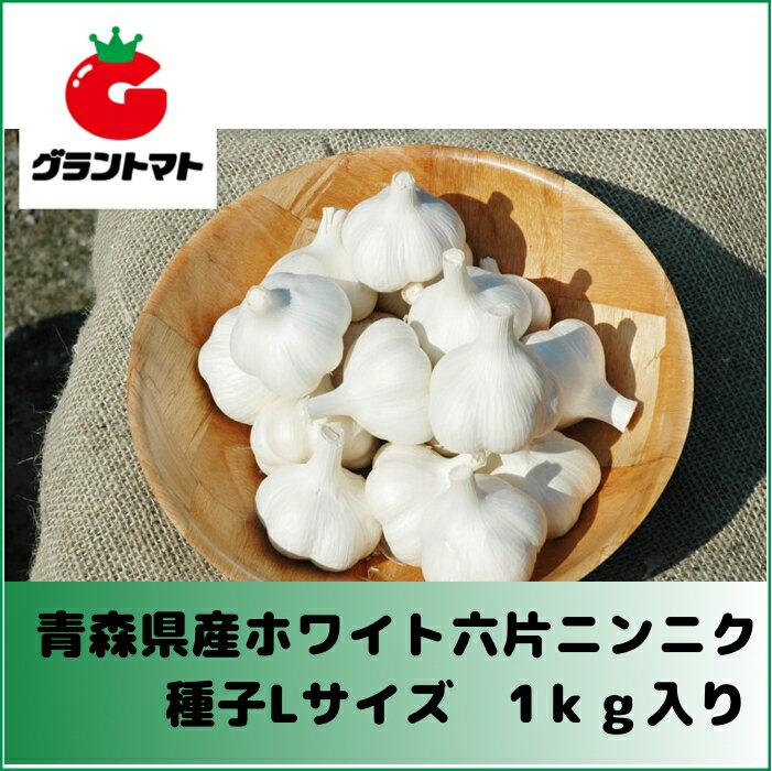 ホワイト六片ニンニク種子 1kg Lサイズ(約13個) 【青森県産】