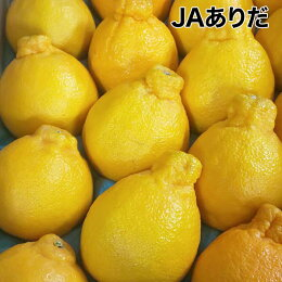 【JAありだ】デコポン約5kg18〜20玉(3Lまたは2L)紀州和歌山県産