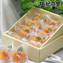 【送料無料】【JA紀の里】あんぽ柿 1個70g 10個入 紀州 和歌山県産 贈答 お中元 お歳暮