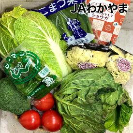 【送料無料】【JAわかやま】 てまり野菜セット 和歌山特産品セット(野菜セット)【代引き不可】