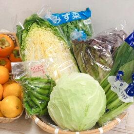 【送料込】【JAわかやま】 てまり野菜と果実のセット 和歌山特産品セット【代引き不可】※お届け時期により内容が変わります。生姜の佃煮は必ず入ります。 cov