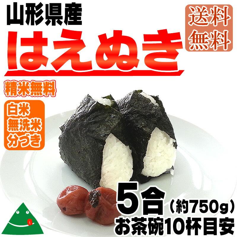 【メール便×送料無料】平成29年産山形県産はえぬき5合(約750g)