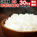 米 玄米 30kg あきたこまち 30kg×1袋 令和2年産 山形県産 精米無料 白米 無洗米 分づき 当日精米 送料無料