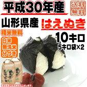 平成30年産山形県産はえぬき玄米10kg