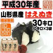 平成30年産山形県産はえぬき玄米30kg
