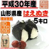 平成30年産山形県産はえぬき玄米5kg