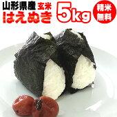 令和元年産山形県産はえぬき玄米5kg