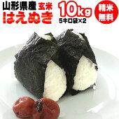 令和元年産山形県産はえぬき玄米10kg