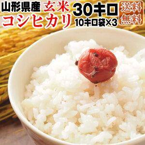 【送料無料】令和元年度産 山形県産 お米コシヒカリ 玄米 30kg(10kg袋×3)【白米・無洗米・分づき】