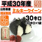 平成30年産山形県産ミルキークイーン玄米30kg