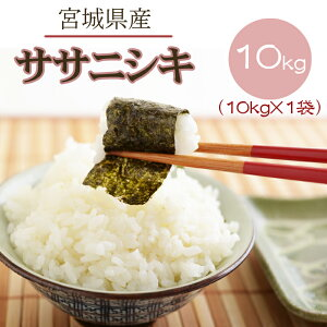 米 玄米 10kg ササニシキ 10kg×1袋 令和2年産 宮城県産 精米無料 白米 無洗米 分づき 当日精米 送料無料
