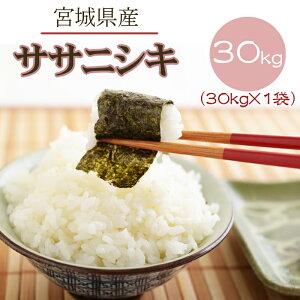 米 玄米 30kg ササニシキ 30kg×1袋 令和2年産 宮城県産 精米無料 白米 無洗米 分づき 当日精米 送料無料