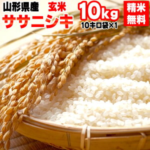 【送料無料】令和元年度産 山形県産 お米ササニシキ 玄米 10kg (10kg袋×1)【白米・無洗米・分づき】