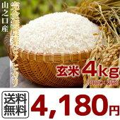 完全無農薬宮崎山之口県産ヒノヒカリ玄米4kg(2kg×2袋)