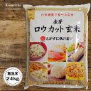 【無洗米】新米 令和元年産 金芽ロウカット玄米24kg(2kg×12袋)お徳用【送料無料(北海道・東北除く)】