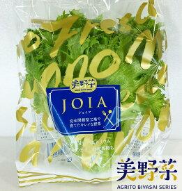 美野菜 低カリウムレタス(約80g×10パック)