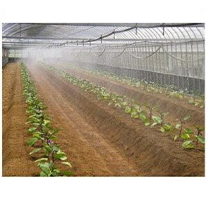住化農業資材 ミストエース20 ハウスクール02 100m巻 微細噴霧・簡易冷房向け 潅水チューブ 灌水チューブ