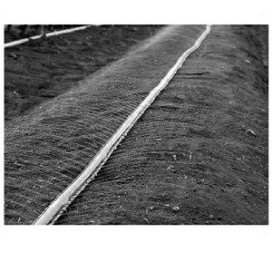 住化農業資材 スミサンスイNEWマルチ100−3 100m巻 2.5千鳥 0.3mmφ 潅水チューブ 灌水チューブ